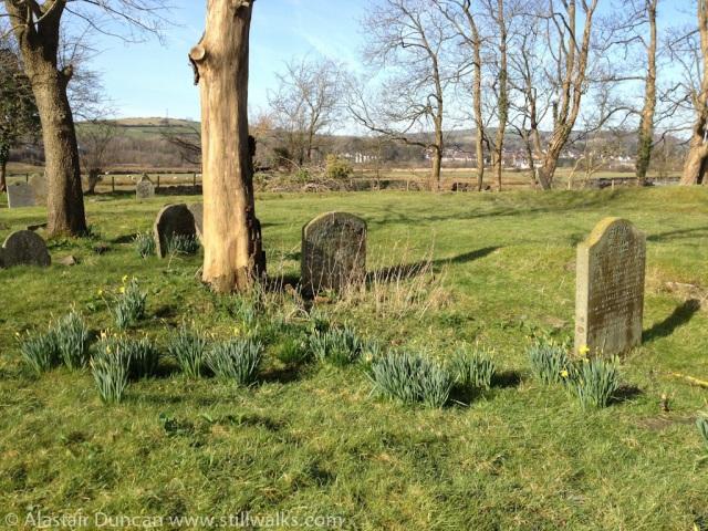 St Teilo's Churchyard