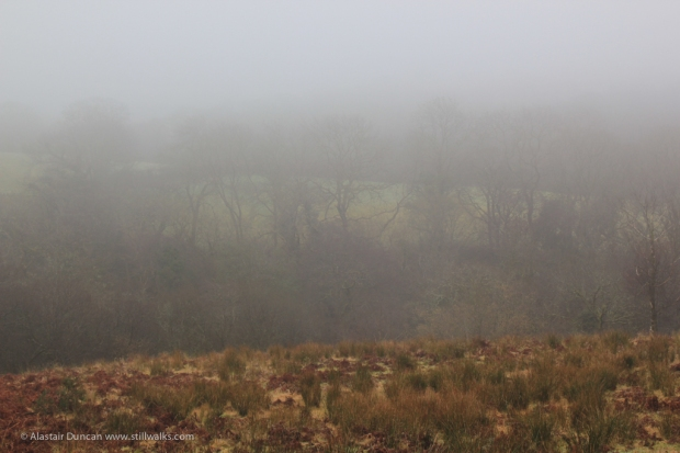 Mist over Lliw Valley