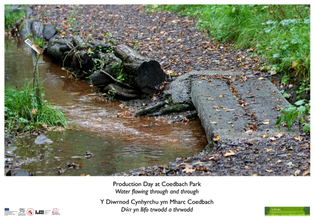 Pontarddulais Exhibition