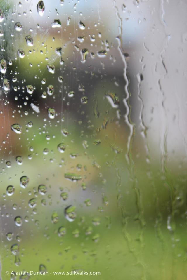 rainy windy day