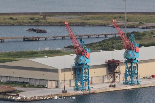 Swansea Cranes