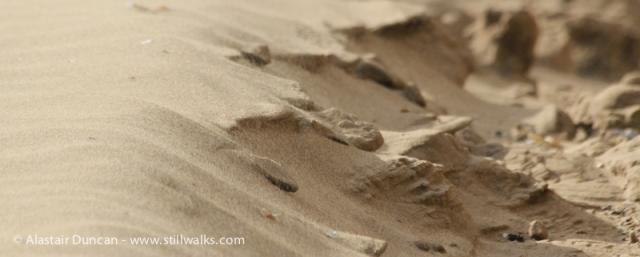 Swansea Sand