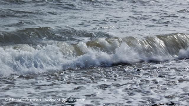 Shore Walk-2