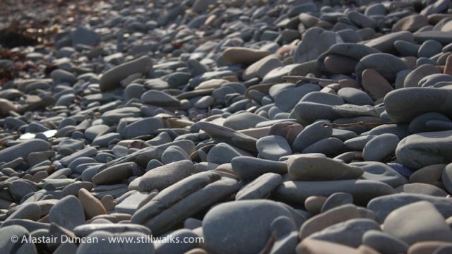 Shore Walk-Pebbles