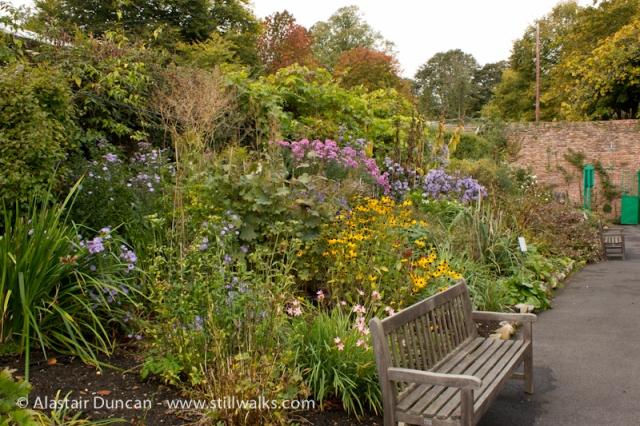 Botanic Gardens, Swansea