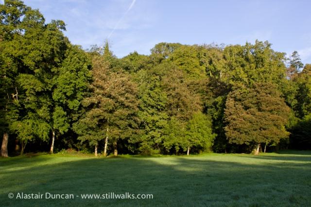 Cwm Green
