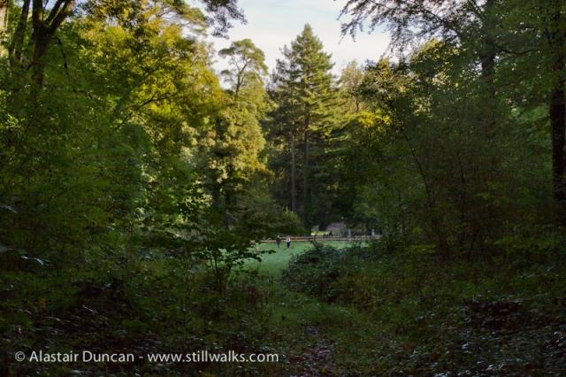 Cwm Green Footpath-3