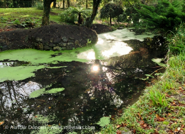 Cwmdonkin Park Water