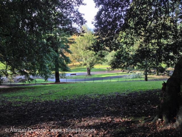Cwmdonkin Park, Swansea-2