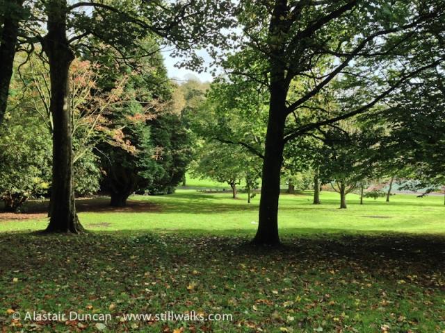 Cwmdonkin Park, Swansea-5
