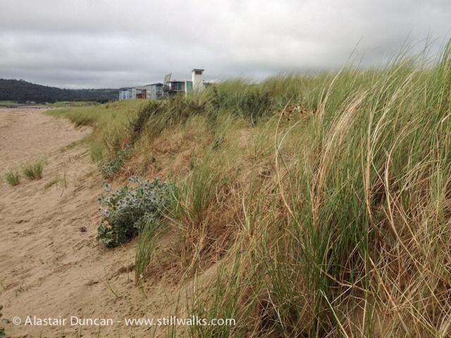 Llanelli Beach Landscape-3