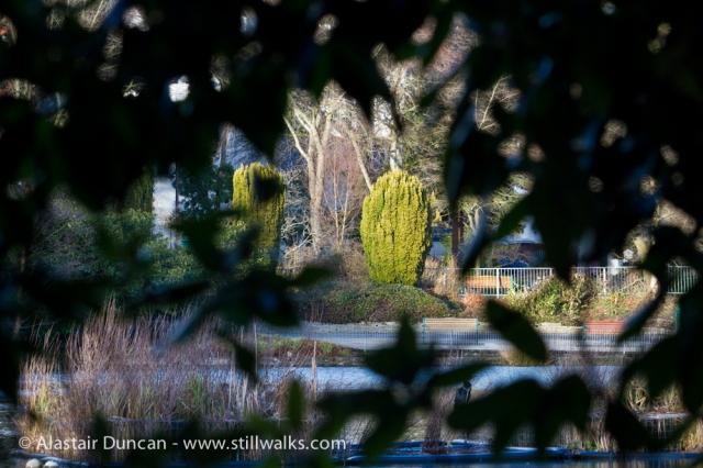 Brynmill Park Lake