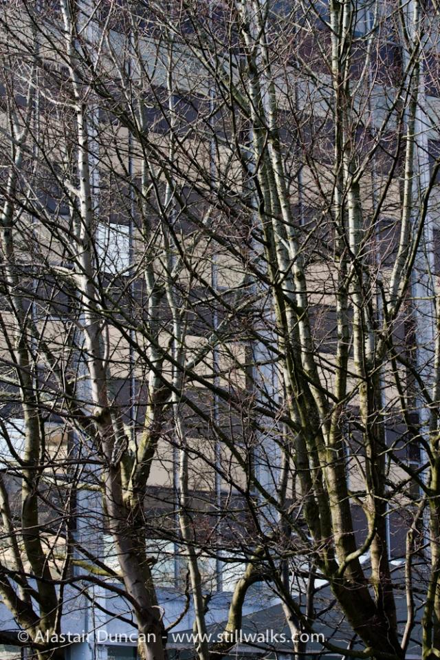 Cardiff architecture