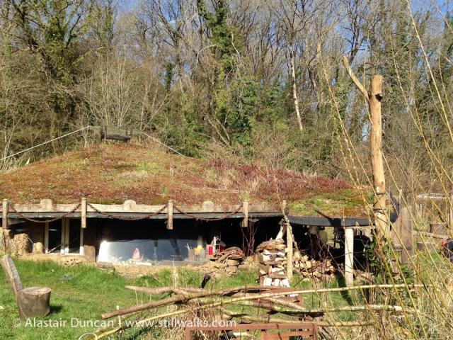 Coeden Fach Round House