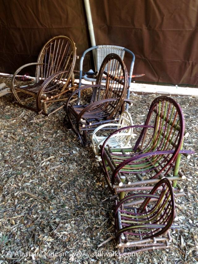 Coeden Fach chairs