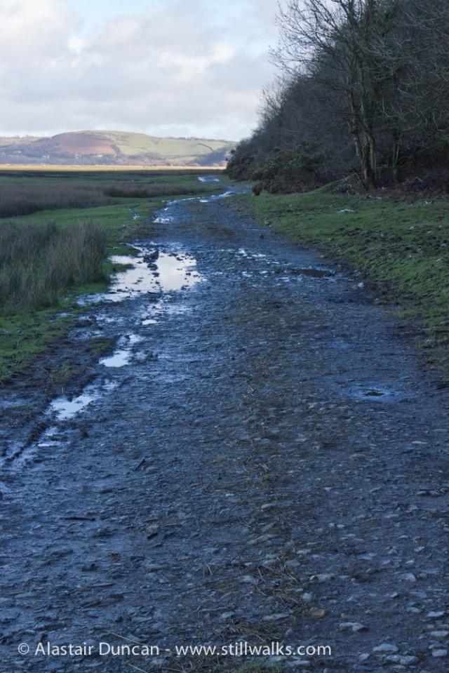 Estuary footpath
