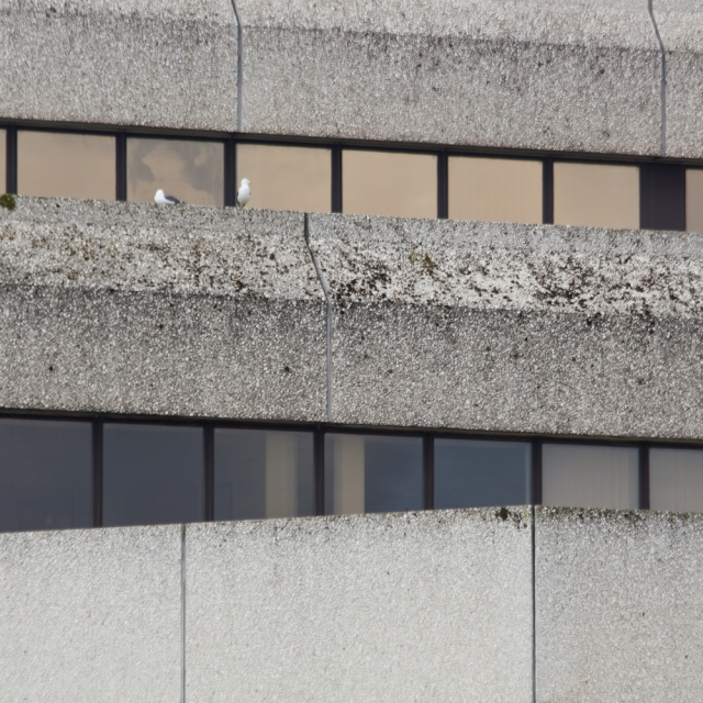 Swansea Architecture