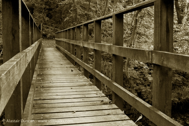 sepia footbridge