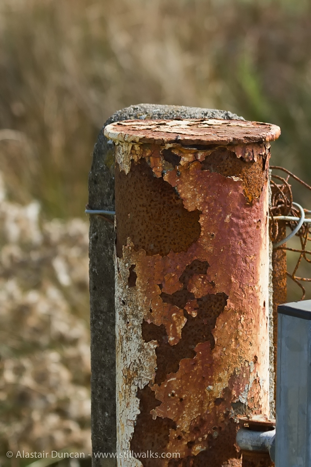 rusty fence post