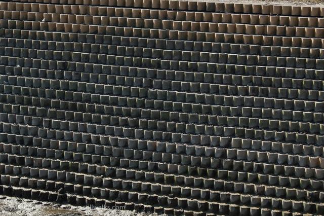 dock wall pattern