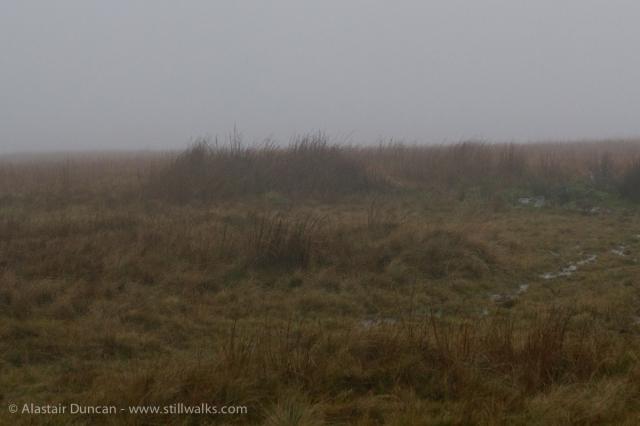 Mist and rain on Mawr