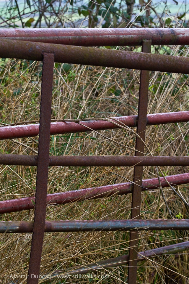 Carmarthenshire Gate