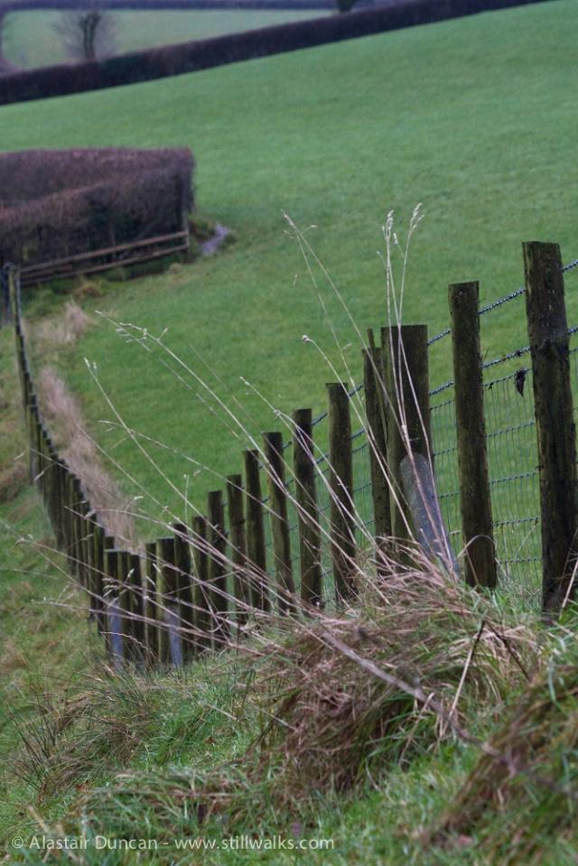 Carmarthenshire Fence