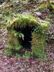 mossy well
