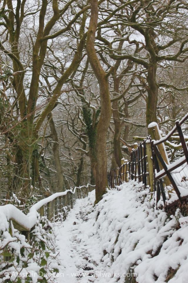 winter footpath