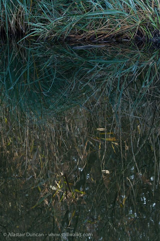 Tennant Canal