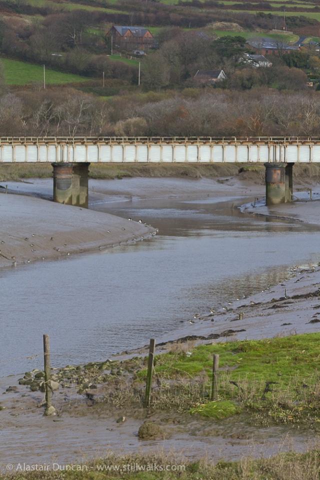 Gwendraeth Fach and railway bridge