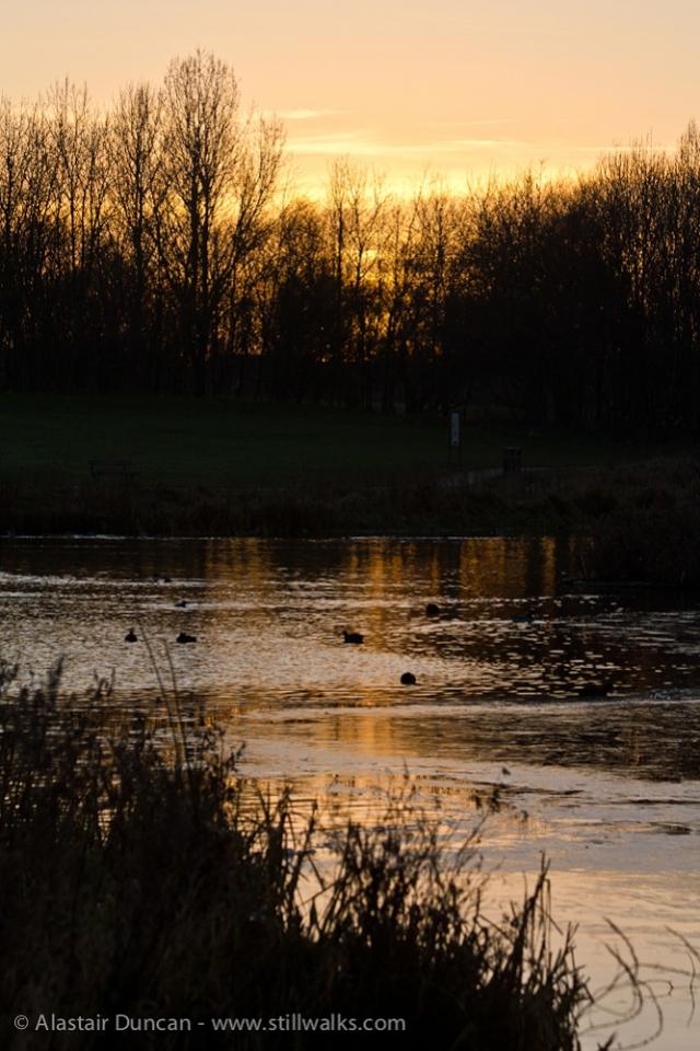 Lake Sunset-10