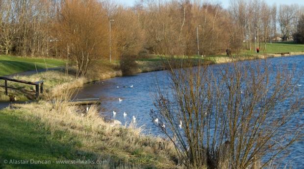Hemlington Lake
