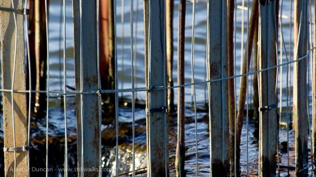 Hemlington Lake outlet