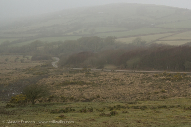 Misty Gower Landscape