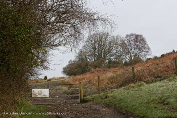 Graig Fawr Walk